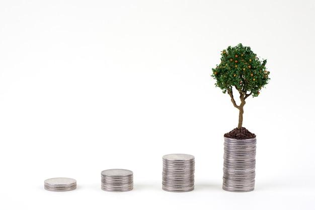 Baum, der auf stapel münzen steht