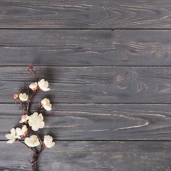 Baumast mit weißen blumen auf holztisch