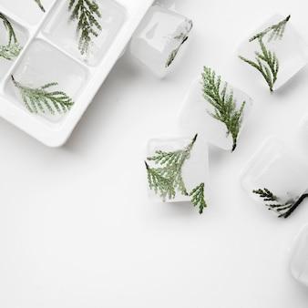 Baumnadeln in eiswürfeln und tablett