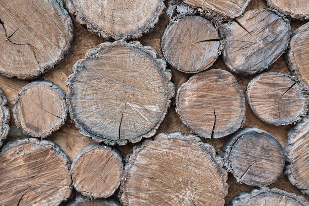 Baumstümpfe. holzhintergrund mit rauem und natürlichem