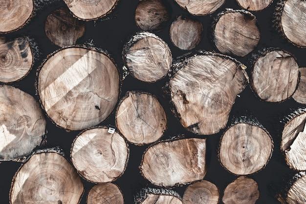Baumstumpf hintergrund