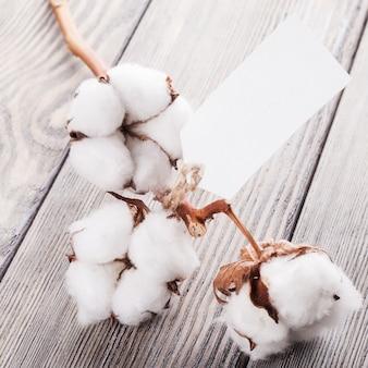 Baumwolle bio-textil