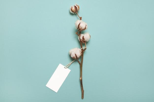 Baumwollpflanzenblume mit leerem etikett oder etikett. draufsicht