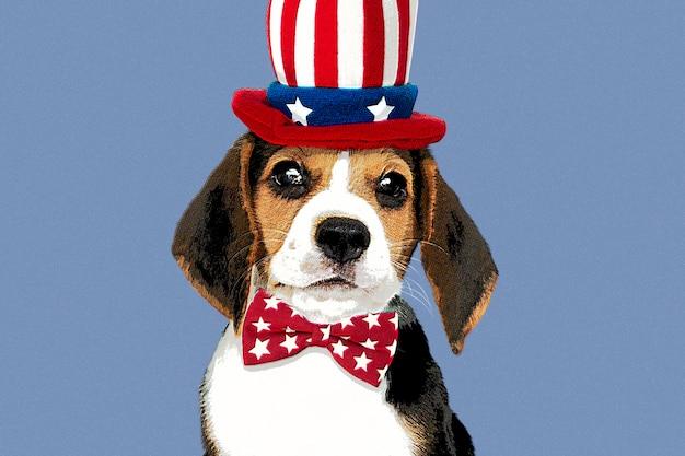 Beagle mit hut im pop-art-stil