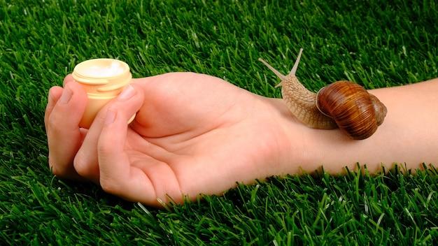 Beauty-hautpflegekosmetik mit schneckenmucin, feuchtigkeitscreme in der hand mit schnecke auf grünem gras