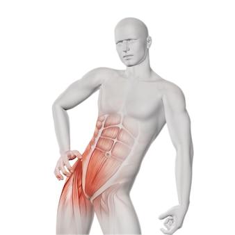 Becken- muskel stetch