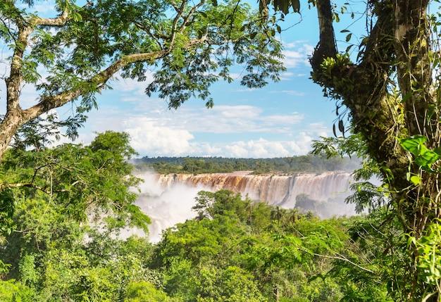 Beeindruckende iguazú-wasserfälle (iguazu) an der grenze zwischen argentinien und brasilien. mächtige wasserfälle im dschungel.