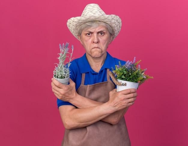 Beeindruckte ältere gärtnerin mit gartenhut, die die arme kreuzt, die blumentöpfe isoliert auf rosa wand mit kopienraum halten