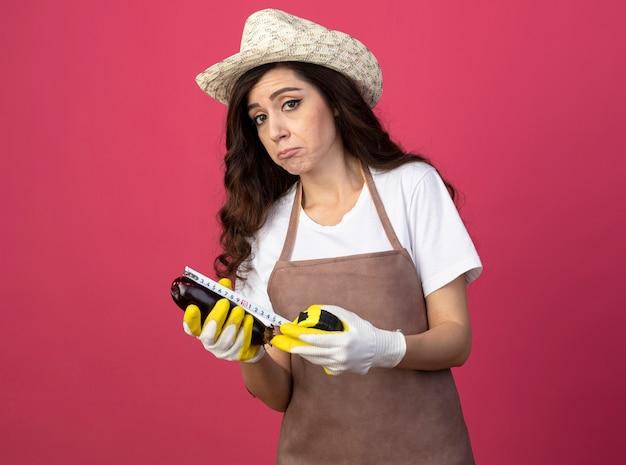 Beeindruckte junge gärtnerin in uniform mit gartenhut und handschuhen, die auberginen mit maßband messen, isoliert auf rosa wand