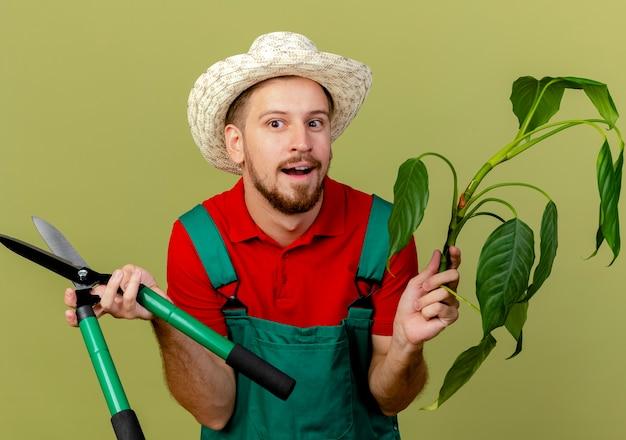 Beeindruckte junge hübsche slawische gärtnerin in uniform und hut, die pflanze und gartenschneider hält, die seite lokalisiert auf olivgrüner wand betrachten