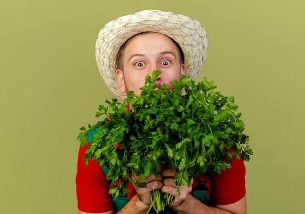 Beeindruckter junger hübscher slawischer gärtner in uniform und hut, der koriander von hinten davon lokalisiert auf olivgrüner wand hält