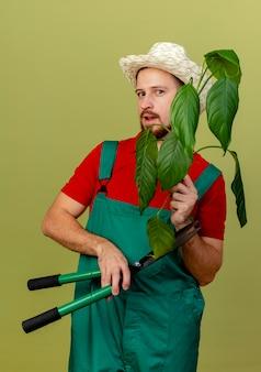 Beeindruckter junger hübscher slawischer gärtner in uniform und hut, die pflanze und gartenschere lokalisiert auf olivgrüner wand isoliert