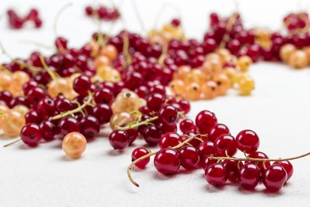 Beeren von weißen und roten johannisbeeren hautnah. weißer hintergrund