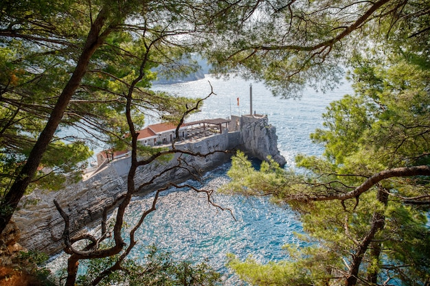 Befestigte felsige klippe nahe petrovac stadt in montenegro durch kiefernzweige in der adria