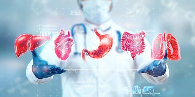 Behandlungskonzept für die inneren organe des menschen. der arzt zeigt die organe des patienten, ein hologramm mit medizinischen hinweisen. moderne medizin, gesundheitswesen, krankenversicherung.