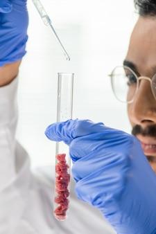 Behandschuhter junger männlicher arbeiter der lebensmittelqualitätskontrolle, der flüssige substanz mit mehreren winzigen proben von rohem gemüsefleisch in eine flasche tropft