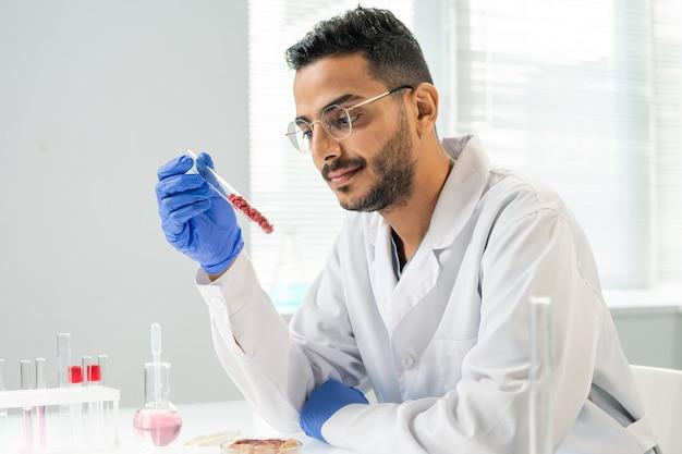 Behandschuhter zeitgenössischer forscher im weißkittel, der während des wissenschaftlichen experiments im labor einen kolben mit mehreren winzigen proben von rohem gemüsefleisch betrachtet