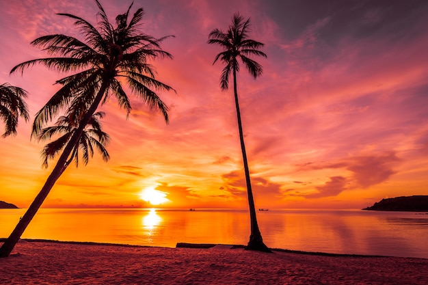 Bei sonnenuntergang am tropischen strand und meer mit kokospalme
