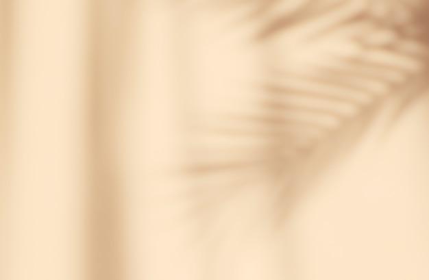 Beige hintergrund des abstrakten schattenbildschattens des natürlichen blattbaumzweigs, der auf wand fällt.
