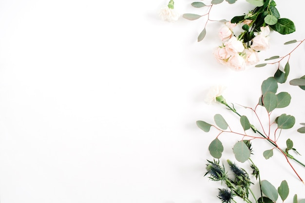 Beige rosenblüten, eringiumblume, eukalyptuszweige auf weißem hintergrund. flache lage, ansicht von oben