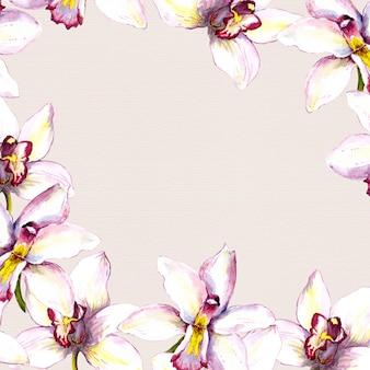 Beiger rahmenmit blumenhintergrund mit weißer orchideenblume