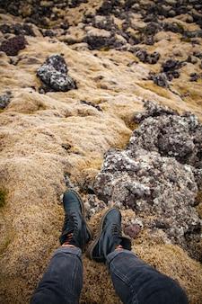 Beine an bemoosten steinen in island