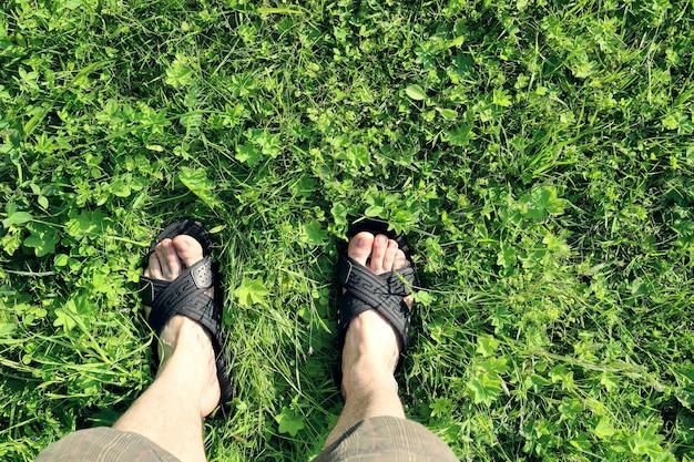 Beine des mannes in sandalen, die an einem sonnigen tag auf grünem gras stehen