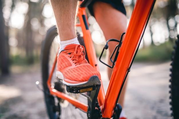 Beine des mannes in turnschuhen, die fahrrad durch kiefernwald reiten