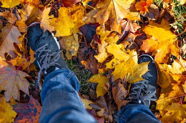 Beine in turnschuhen und jeans, die auf dem boden mit herbstlaub stehen