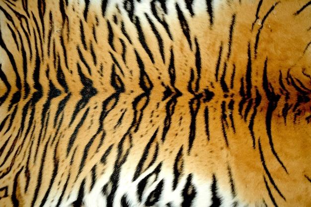 Bengal tiger pelz