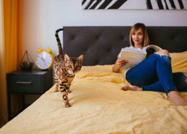 Bengalkatze kommt zu einer frau, während sie auf dem bett liest
