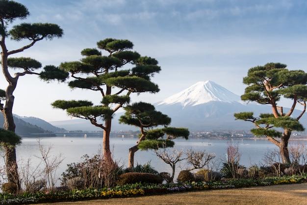 Berg fuji fujisan vom kawaguchigo see mit garten im vordergrund bei yamanashi