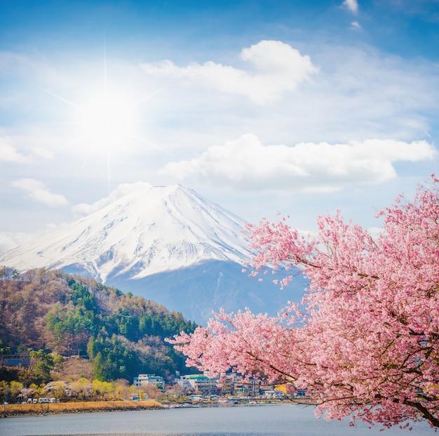 Berg fuji im frühjahr, kirschblüte sakura