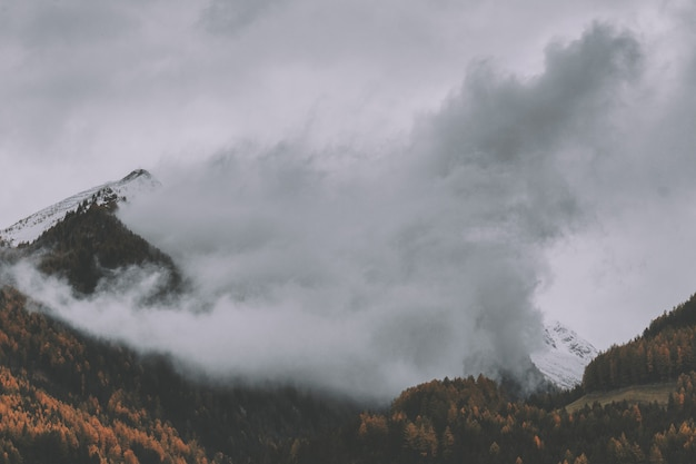 Berg mit nebel