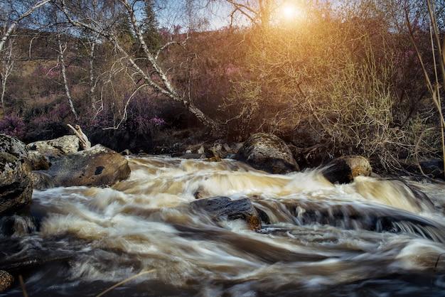 Berg schnell fließender fluss, fließendes wasser zwischen felsen im sonnenlicht. frühlingslandschaft mit großen steinen im schnellen bach.