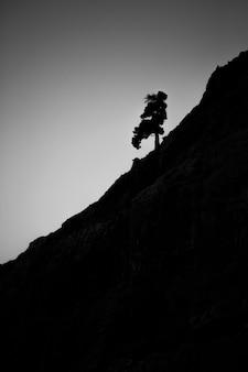 Berg- und baumschattenbilder in ordesa und im monte perdido-nationalpark, spanien