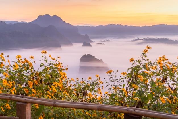 Berg- und blumenansichten nationalparks phu langka, thailand