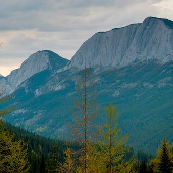Berge, jasper national park, alberta, kanada