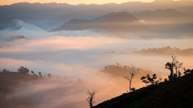 Berge mit dichtem nebel und einer morgensonne steigen in der landschaft auf.