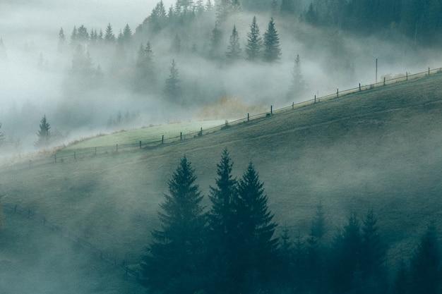 Berge und see, weinlesefilter