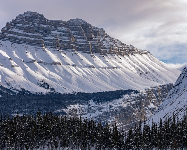 Berge und wald - gut für eine abkühlung
