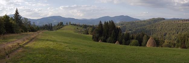 Bergige grüne sommerwiese mit heustapeln (slavske-dorf, karpaten, ukraine). acht schüsse zusammengesetztes bild.