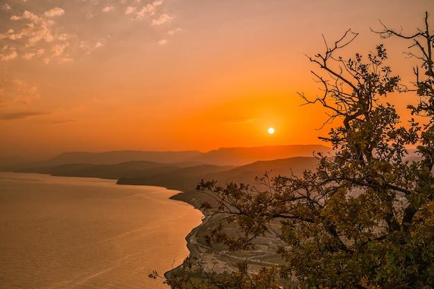 Berglandschaft bei sonnenuntergang durch die zweige der bäume fotografiert