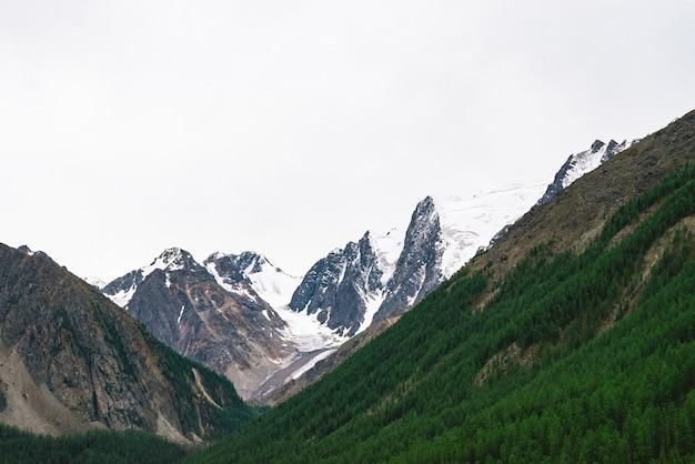 Berglandschaft mit schneebedeckten bergen und wald an hängen