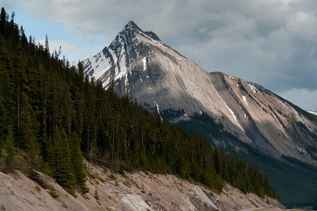 Bergspitze, jasper national park, alberta, kanada