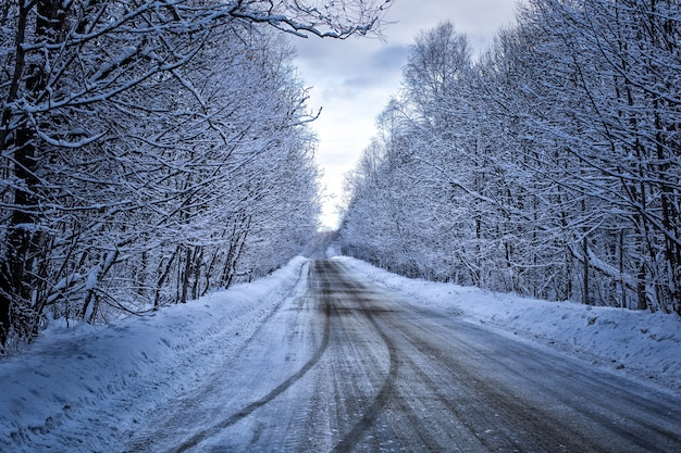 Bergwaldstraße landschaft schnee winter kalt