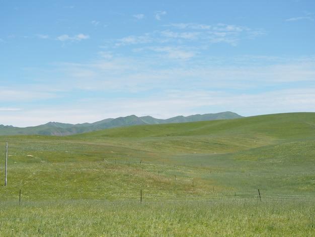 Bergwiesen und schöner himmel.