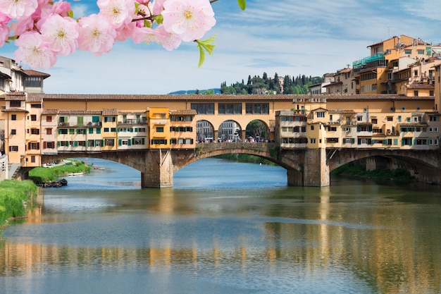 Berühmte brücke ponte vecchio über den fluss arno im frühjahr, florenz, italien