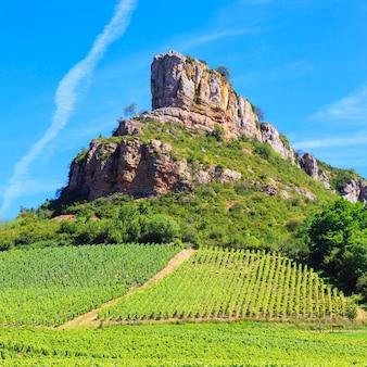 Berühmter solutre rock mit weinbergen in burgund, frankreich
