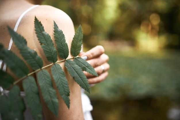 Beschnittenes bild der unbekannten mysteriösen jungen frau, die im park aufwirft, grünes blatt hält, während draußen im freien an sonnigem tag entspannt. nahaufnahme der farnpflanze in der weiblichen hand.